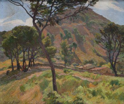 Marius BARRET (1865-?)