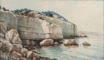 Auguste MARTIN (1828-1910)