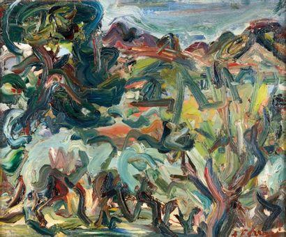 Antoine FERRARI (1910-1995) Antoine FERRARI (1910-1995)  Les oliviers  Huile sur...