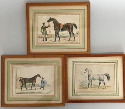 Chevaux Suite de 6 gravures - 12,5 x 18 cm...