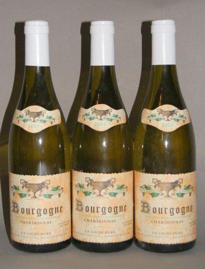 3 Bouteilles BOURGOGNE BLANC - COCHE DURY....