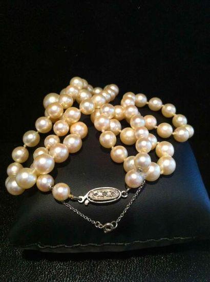 Collier de perles de culture et fermoir en...