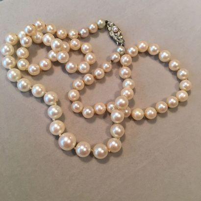 GUBELIN Collier d'un rang de perles de culture...