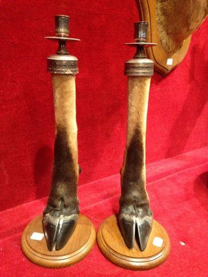 Antilope spp (CH) : 2 pattes montées en bougeoirs...