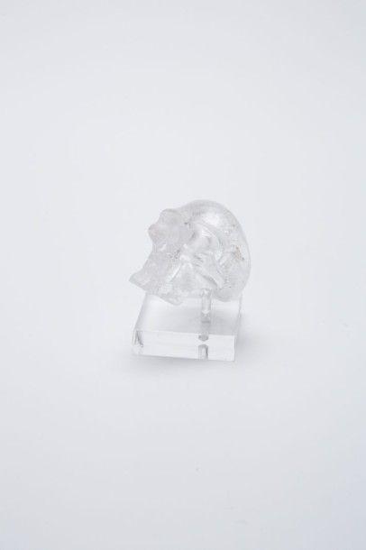 Tête de mort en cristal de roche sculpté...