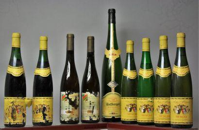 LOT de 8 bouteilles et 1 magnum CAVE DE KIENTZHEIM-KAYSERBERG...