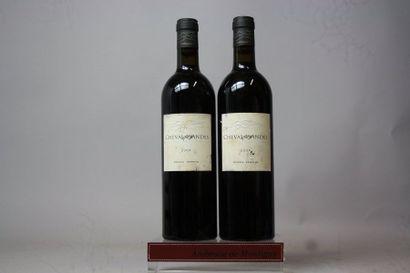2 bouteilles CHEVAL DES ANDES Vin produit...