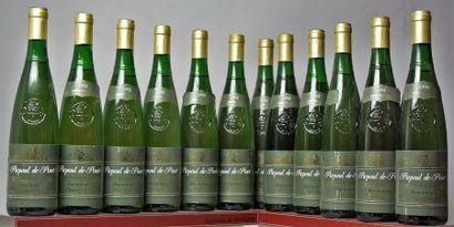 12 bouteilles COTEAUX DU LANGUEDOC Blanc...