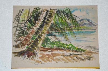 Philippe DAUCHEZ (1900 - 1984)  11 dessins...