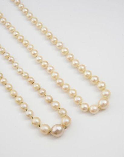 Lot de deux colliers de perles de culture en chute L.: 50 et 51 cm