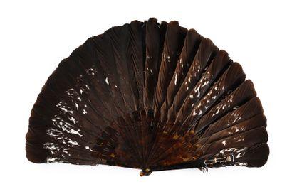Grands Tétras, vers 1900 Éventail en plumes...