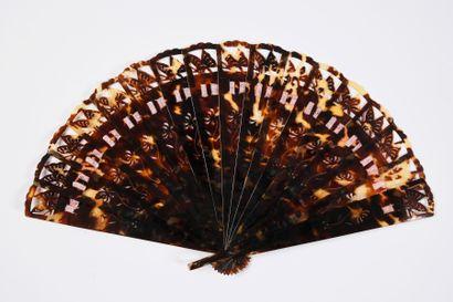 Papillons d'écaille, début du XXe siècle...