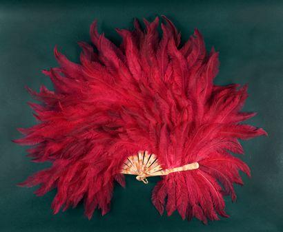 Rose, vers 1900 Éventail en plumes d'autruches...