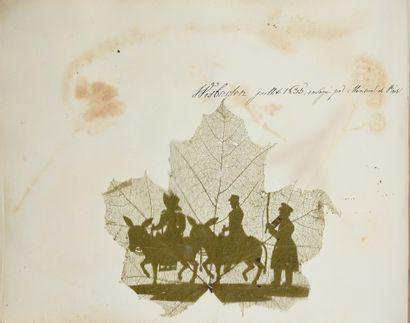 [Herbier][Album Amicorum] Herbier d'Apollonie...