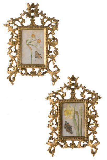 Ecole Italienne du XVIIIe siècle Narcisse et papillon Jonquille et papillon Paire...