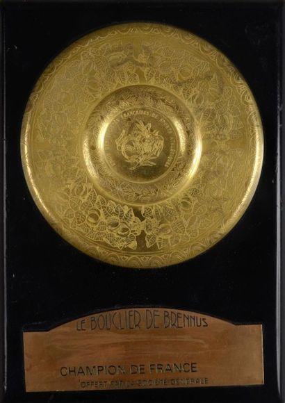 Replique Miniature Du Bouclier De Brennus