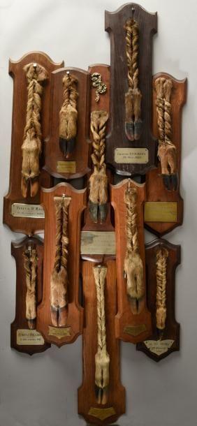 Pied d'honneur de cerf: Equipage d'Halatte,...