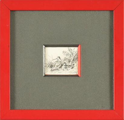 Georges Frédéric ROTIG (1873 - 1961) Etude de Bécasses. crayon et encre. 5 x 5,5...