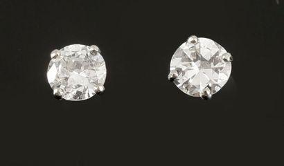 Paire de puces d'oreilles en or blanc 750 millièmes ornées d'un diamant rond taille...