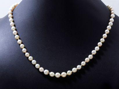 Collier composé d'une chute de perles fines d'environ 4.3 à 6.8 mm, de 3 perles...