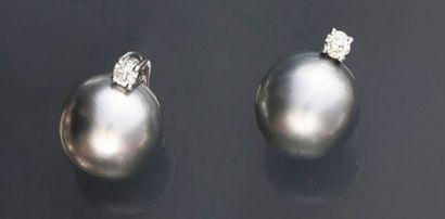 Paire de boucles d'oreille en or gris 750e, ornées d'une perle de culture gris clair,...