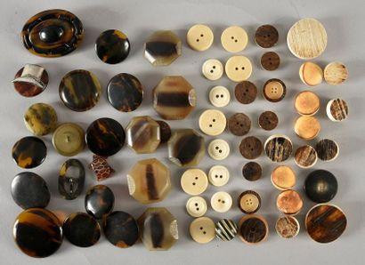 Lot de boutons en matières naturelles pour...