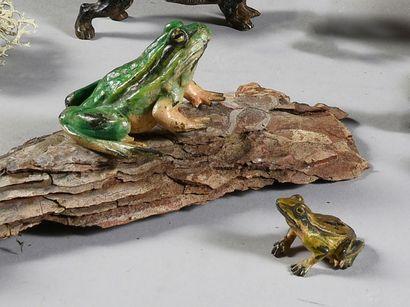 Deux grenouilles vertes L. : 6 et 3 cm
