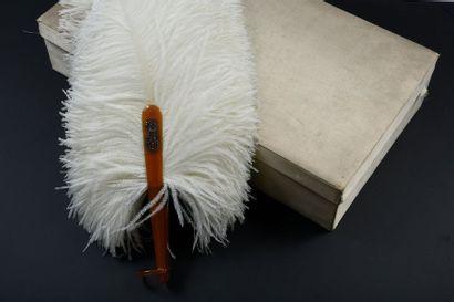 Blancheur, vers 1900 Eventail en plumes d'autruches...