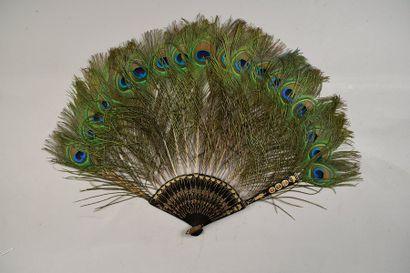 Ocelles de paon, vers 1900-1920 Eventail...