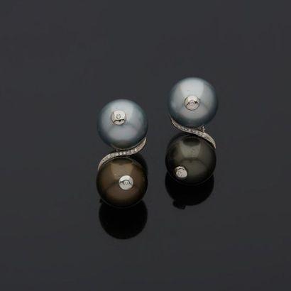 Paire de clips d'oreilles en or gris, 18k...