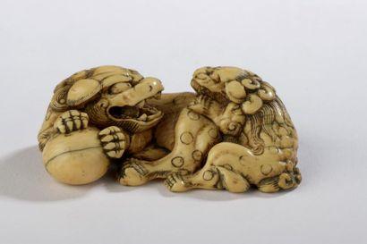 Netsuke en ivoire, deux shishi dont l'un...