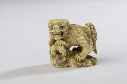 Netsuke en ivoire, shishi sur un rocher avec...