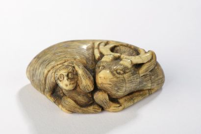 Netsuke en ivoire, buffle allongé, un singe...
