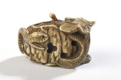 Netsuke en ivoire à patine jaune, serpent...