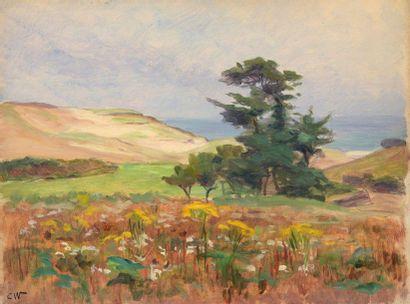 Charles WISLIN (1852-1932)  Champs de fleurs...