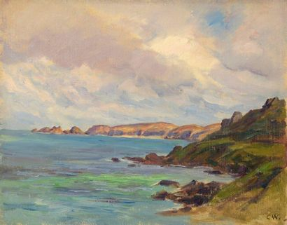 Charles WISLIN (1852-1932)  Anse rocheuse...