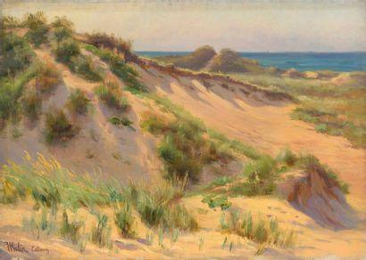 Charles WISLIN (1852-1932)  Soleil dans la...