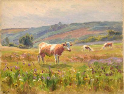 Charles WISLIN (1852-1932)  Vaches au pré...