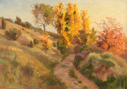Charles WISLIN (1852-1932)  Forêt de Roye...