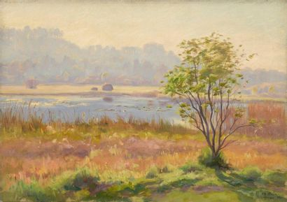 Charles WISLIN (1852-1932)  Étang en forêt...
