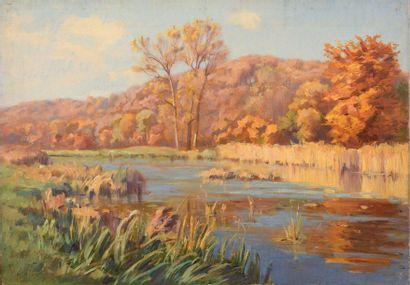 Charles WISLIN (1852-1932)  L'étang de l'Etau...