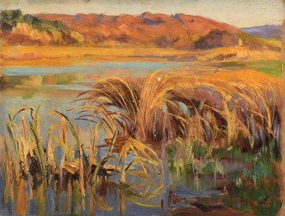 Charles WISLIN (1852-1932)  L'étang d'Etau...