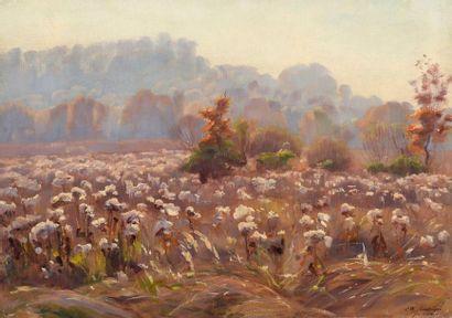 Charles WISLIN (1852-1932)  Les champs de...