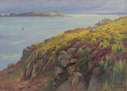 Charles WISLIN (1852-1932)  Les bruyères...