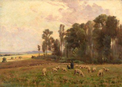Charles WISLIN (1852-1932)  Gardien de moutons...
