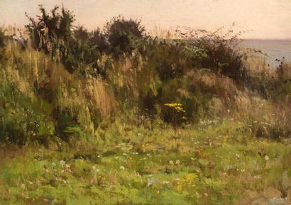 Charles WISLIN (1852-1932)  Les fleurs sauvages...