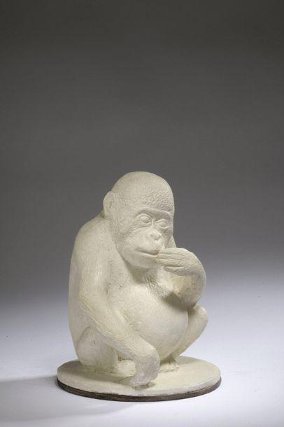 Paul SIMON (1892 -1979)  Orang outan  Épreuve...