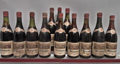 12 bouteilles BEAUJOLAIS 1964 - Noel Briday...