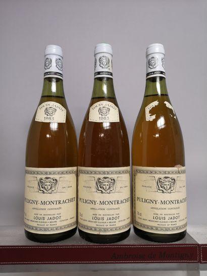 3 bouteilles PULIGNY MONTRACHET - L. JADOT...