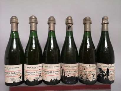 6 bouteilles VIN NATURE de CHAMPAGNE Blanc...